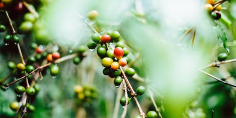 Global Coffee Production: Aiming for More Sustainable, Productive Farms tickets