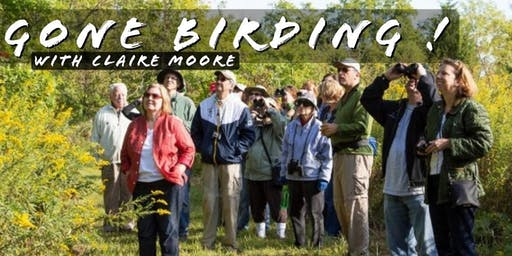 GONE BIRDING! With Claire Moore
