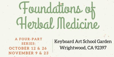 Foundations of Herbal Medicine: Part IV