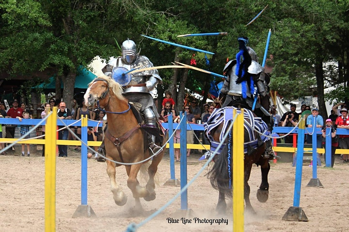 28th Folsom Renaissance Faire & Jousting Tournament image