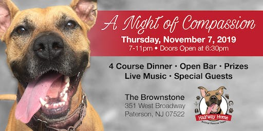 A Night of Compassion - Celebrating our local animals and those who rescue