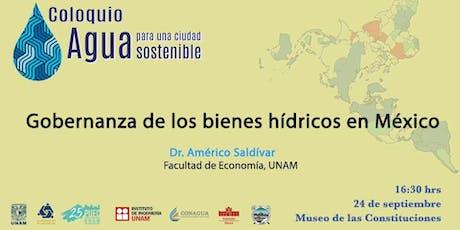 Gobernanza de los bienes hídricos en México entradas