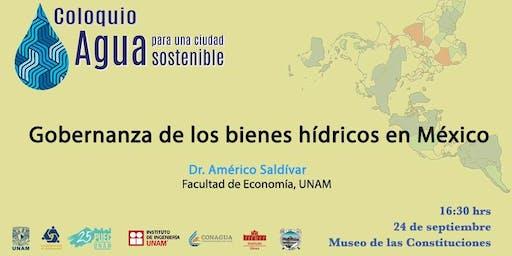 Gobernanza de los bienes hídricos en México