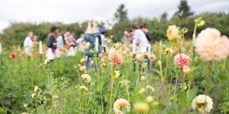 FALL FLOWER FARM EXPERIENCE tickets