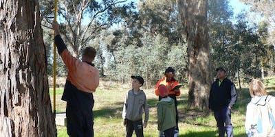 Park Stewardship - Stringybark Reserve Nestboxes