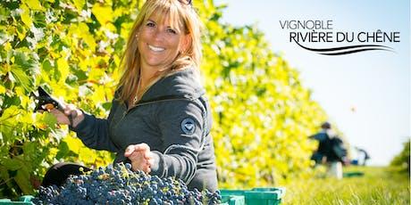 Vendanges 2019 au Vignoble Rivière du Chêne tickets