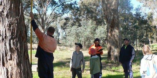 Park Stewardship - Swainsona Reserve Nestboxes