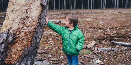 Managing Challenging Behaviour in the Early Years - Glen Waverley