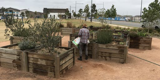 Stockland Elara NSW - Gardening Skills September 2019