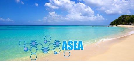 ASEA Presentation tickets