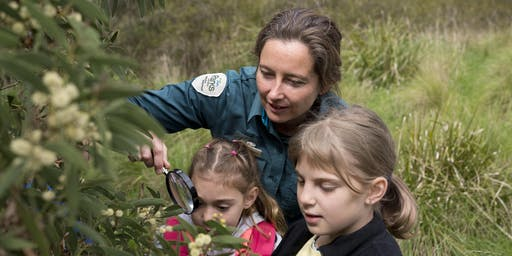 Junior Rangers Bush Detective - Lower Goulburn National Park