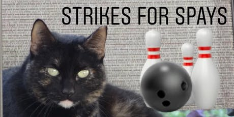 Strikes for Spays with MEOW Now tickets