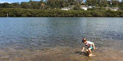Lane Cove Bush Kids - River Life