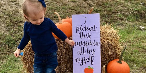 Pick and Paint Your Own Pumpkin