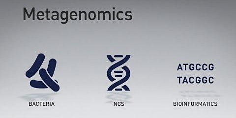 Metagenomics Summer School