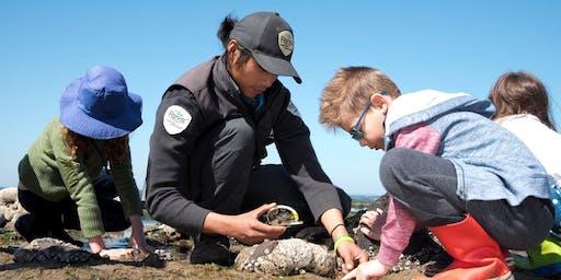 Junior Rangers Beachcombing - Barwon Bluff Marine Sanctuary