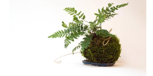 Inter-generational Kokedama Workshop (8-12yrs and an adult)