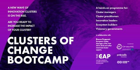 Clusters of Change Bootcamp Tickets