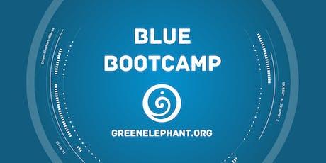 Blue Bootcamp - 2-days in person + 3h online tickets