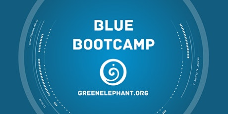 Blue Bootcamp - 2-days in person + 3h online tickets