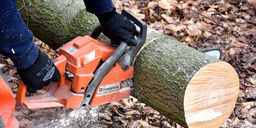Chainsaw Maintenance & Cross-Cutting