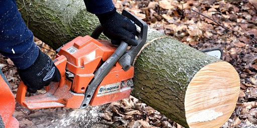 Chainsaw Maintenance & Cross-Cutting