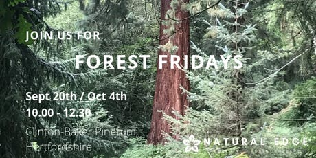 Forest Fridays tickets
