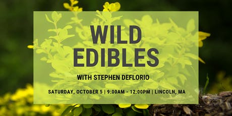 Wild Edibles at Farrington Nature Linc tickets