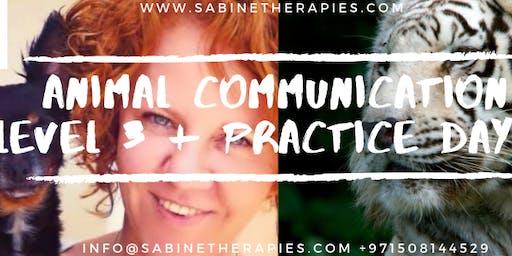 Animal Communication - LEVEL 3 + Practice Day - Intensive Training Program