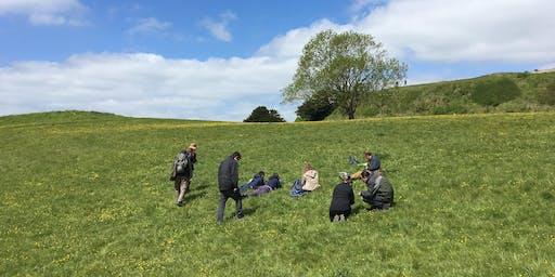 Early Season Grass Identification 2020