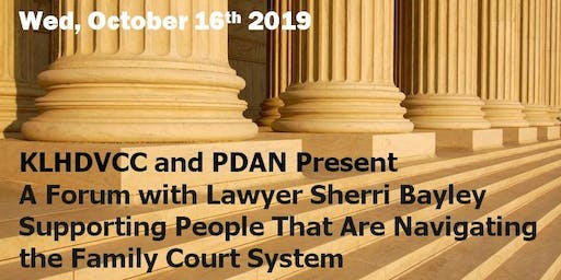Helping People Through the Family Court System