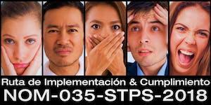 "NOM-035-STPS-2018 ""Ruta de Implementación &..."