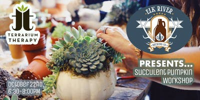 Pumkin Succulent Workshop at Elk River Brewing Company