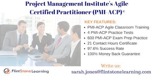 PMI-ACP Certification Training Course in Little Rock, AR