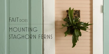 Mounting Staghorn Ferns tickets