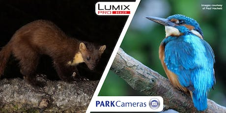Micro Four Thirds - Shooting Wildlife Through A Lens; with Paul Hackett tickets
