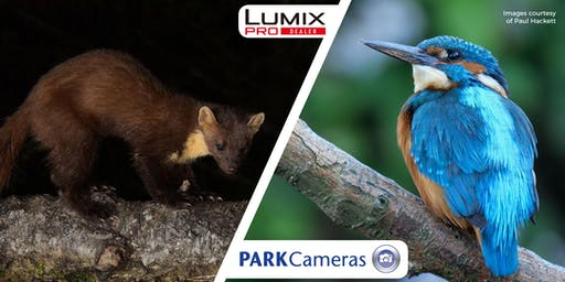 Micro Four Thirds - Shooting Wildlife Through A Lens; with Paul Hackett