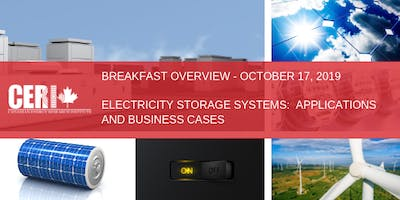 NAIT - Electricity Storage Systems:  Applications and Business Cases