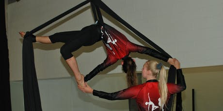 Adult Aerial Silks 1 - Starting September 23 tickets