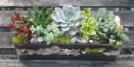 DIY Succulent Garden Design Workshop tickets