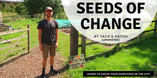 Seeds of Change @ Jack's Patch