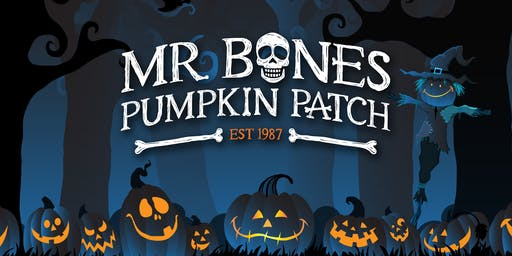 Mr. Bones Pumpkin Patch 2019