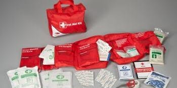 The Parent Collective Infant/Child/Adult CPR & First Aid Westport CT - October 6th
