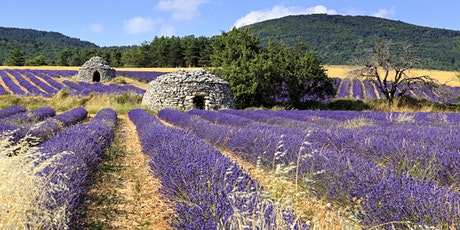 A Culinary Journey in the Heart of Provence  tickets