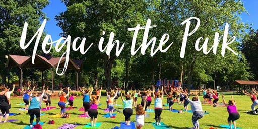 Yoga in the Park, Mesa Arizona