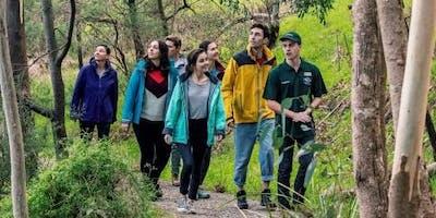 World Wellness Weekend Nature Walk - Gresswell Forest