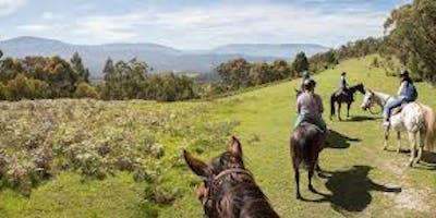 Yarra Valley Weekend Equine Escape (Horses-Healing-Harmony)