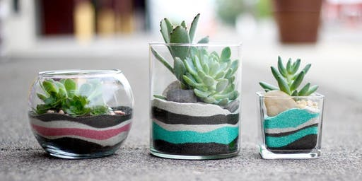 MINI SAND ART | Succulent Terrariums