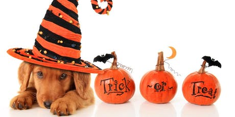 "A Winery Halloween: Dog ""Tricks & Treats"" tickets"
