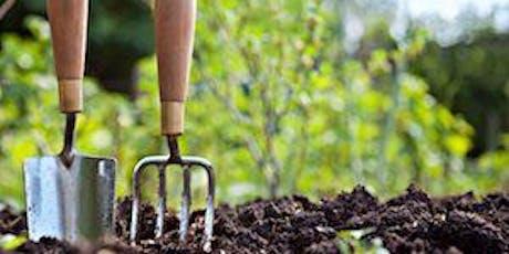 Home Organic Vegetable Gardening (Ulladulla) tickets